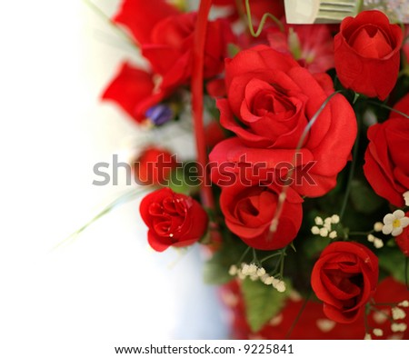Bouquet of red roses isolated on white background. Close-up, shallow DOF. - stock photo