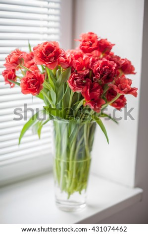 Bouquet of red tulips in a glass vase on the window with blinds