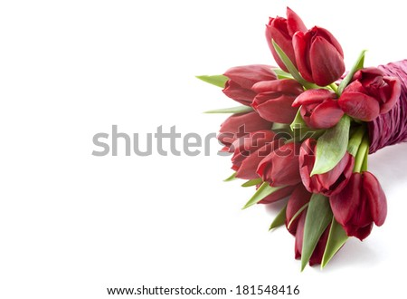 Bouquet of red tulips on white background - stock photo