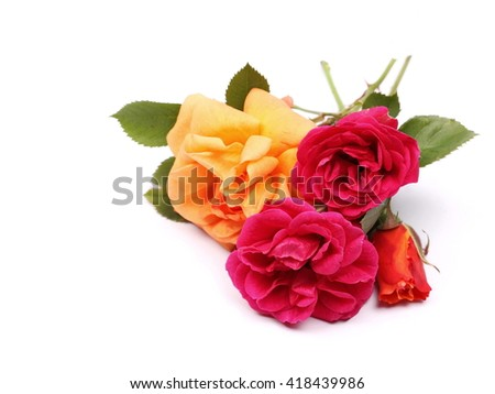 bouquet of roses isolated on white background - stock photo