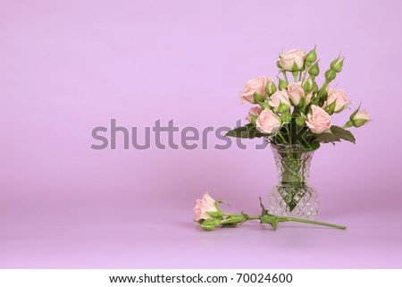 Bouquet of roses on pink - stock photo