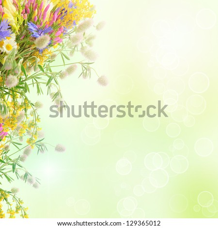 Bouquet of summer flowers  with bokeh and copy space,  floral background - stock photo