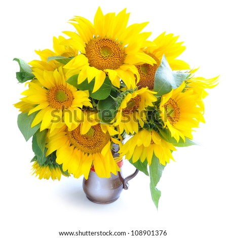 Bouquet of sunflowers are on a white background - stock photo