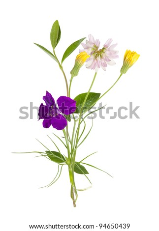 bouquet of the field (wild) flowers, easter colors, isolated