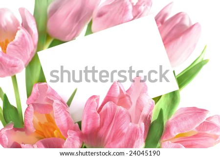 bouquet of the fresh pink tulips with a blank gift tag - stock photo