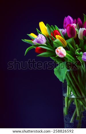 Bouquet of  tulips in glass vase on black background - stock photo
