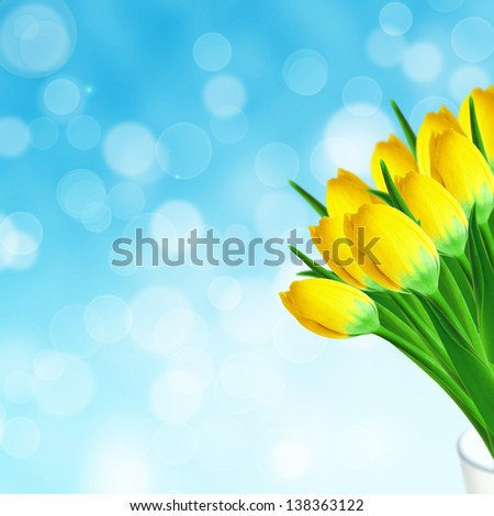 Bouquet of tulips in the vase on the sky background - stock photo