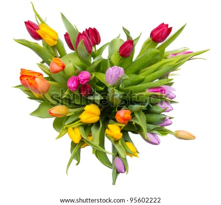 Bouquet of tulips, top view. Isolated on white background - stock photo