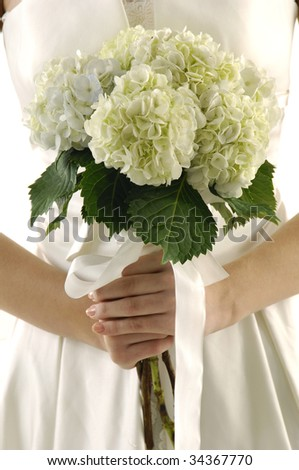 Bouquet of white flower - stock photo