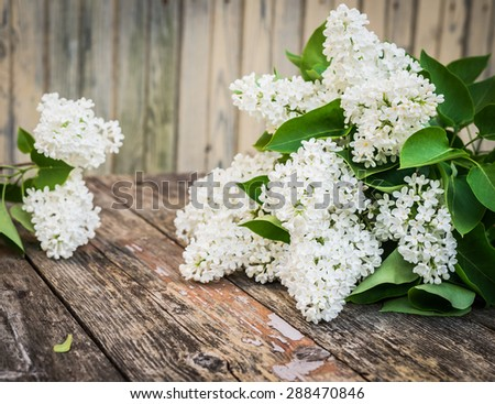 Bouquet of white lilac spring flowers on wooden background. Vintage floral background. - stock photo