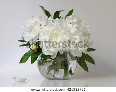 Bouquet of white peony flowers in a vase. Floral home decoration with peonies. - stock photo
