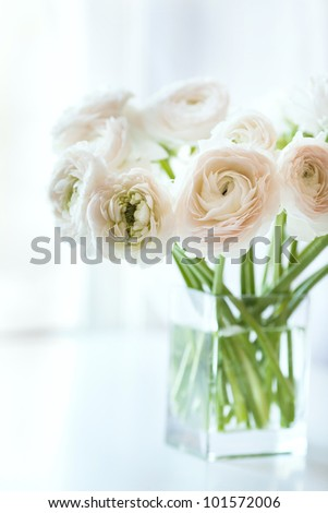 Bouquet of white ranunculus in a glass vase near the window, vertical photo - stock photo