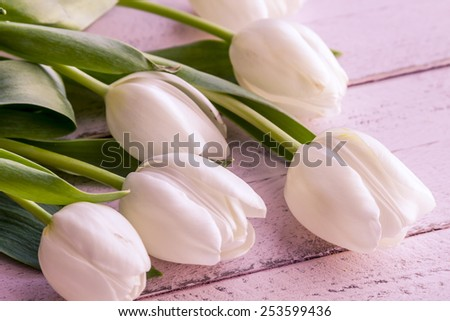 Bouquet of white tulips laying on antique pink wooden table - stock photo