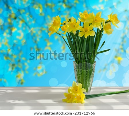 Bouquet of yellow daffodils in a glass vase on a white table on the blue background - stock photo