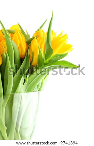 Bouquet of yellow tulips in a glass vase - stock photo