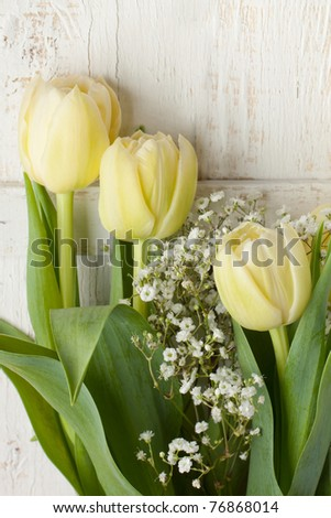 Bouquet of yellow tulips on white wooden table - stock photo