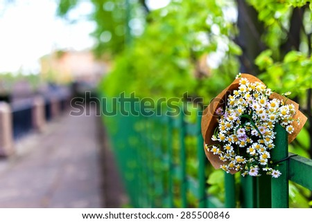 Bouquet on craft paper decoration with daisies over street and park view. Close up. at Saint-Petersburg, RUSSIA - stock photo