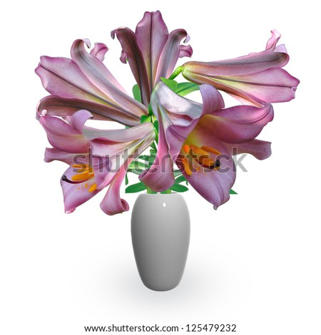 bouquet violet lily in vase - stock photo