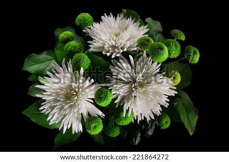 Bouquet white asters and bright green chrysanthemums on dark background - stock photo