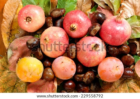 bouquet with autumn chestnuts, pomegranates, persimmons on a bed of leaves.
