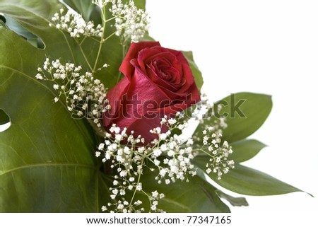 bouquet with one rose and  little white flowers - stock photo