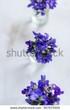 Bouquets of purple spring violet in glass vase near the window