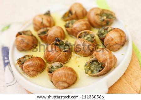 bourguignonne snail - stock photo