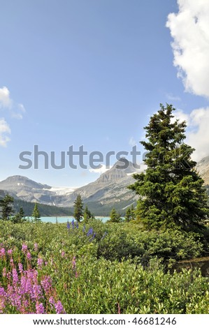 Bow Lake With Bow Glacier in the Backround Vertical With Copy Space - stock photo