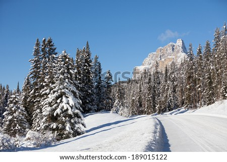 Bow Valley Parkway - stock photo