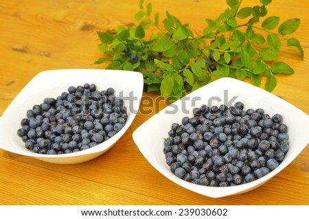 bowl of fresh blueberries on a table. - stock photo