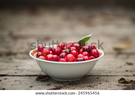Bowl of fresh organic cherries, placed on rustic board, shallow DOF - stock photo