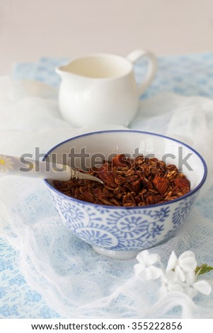 Bowl of Healthy Chocolate Breakfast Cereal