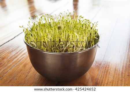 Bowl of lentil sprouts on a wood table