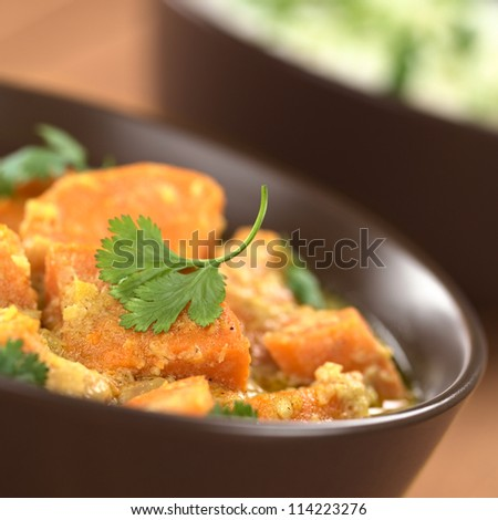 Bowl of vegetarian sweet potato and coconut curry garnished with a cilantro leaf, cooked rice in the back (Selective Focus, Focus on the front of the cilantro leaf) - stock photo