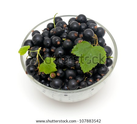 bowl with black currant over white - stock photo