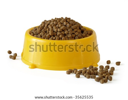 bowl with dog nutrition - stock photo