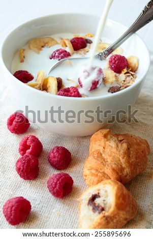 Bowl with oat cereals with milk and raspberry fruits - stock photo