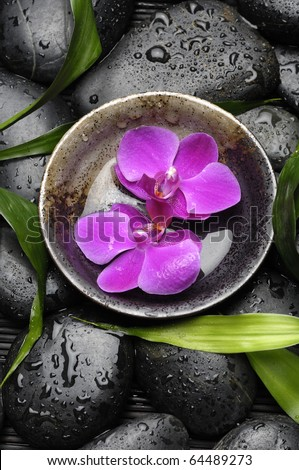 bowl with pink orchid on wet stones - stock photo