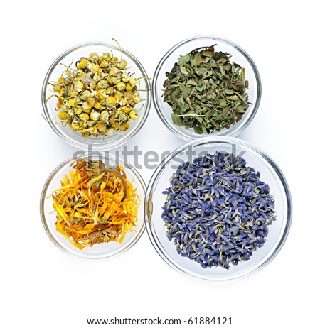 Bowls of dry medicinal herbs on white background from above