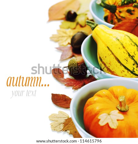bowls with pumpkins over white and autumn leaves. With easy removable sample text - stock photo