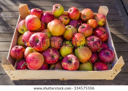 Box of homegrown apples