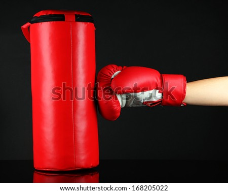 Box training and punching bag, isolated on black