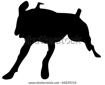 Boxer Silhouette - stock photo