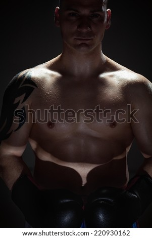 Boxer standing in dark. Light on a boom stand used. - stock photo
