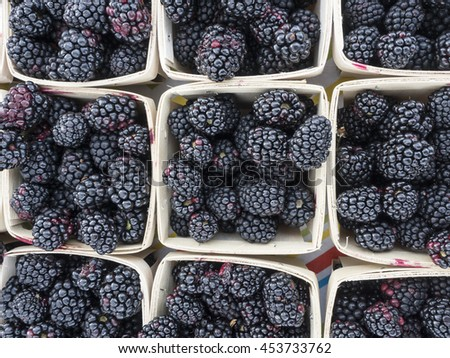Boxes of blackberries at local farm market.