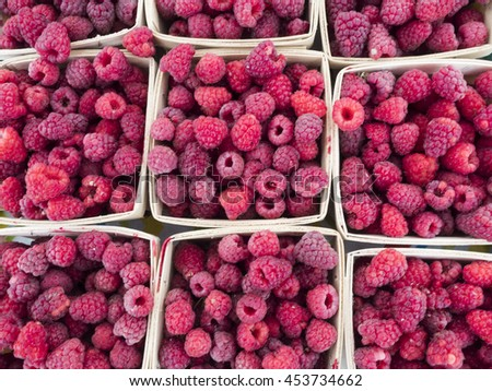 Boxes of just picked raspberries at local farm market. - stock photo