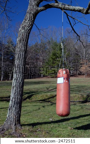 Boxing Heavy Bag Hanging From Tree - stock photo