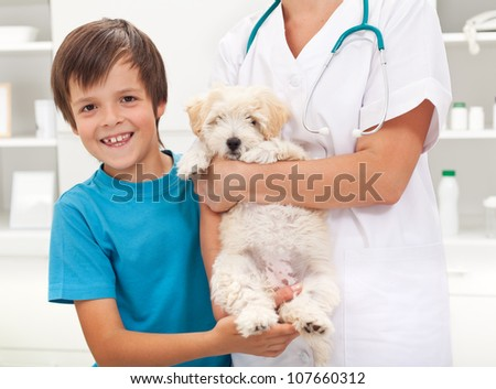 Boy and his beloved fluffy dog at the veterinary doctor office - stock photo