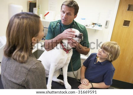 Boy And Mother Taking Dog For Examination By Vet - stock photo