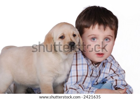 boy and puppy - stock photo